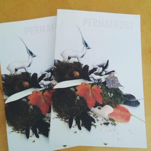 permafrostmagazine
